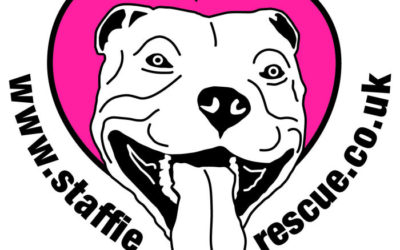 Staffie Rescue Thanks Our Past Volunteers